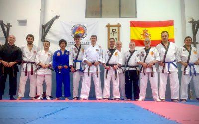 Crónica del tercer seminario de formación de cinturones negros y reciclaje de cinturón verde de hapkido (temporada 2019-2020)