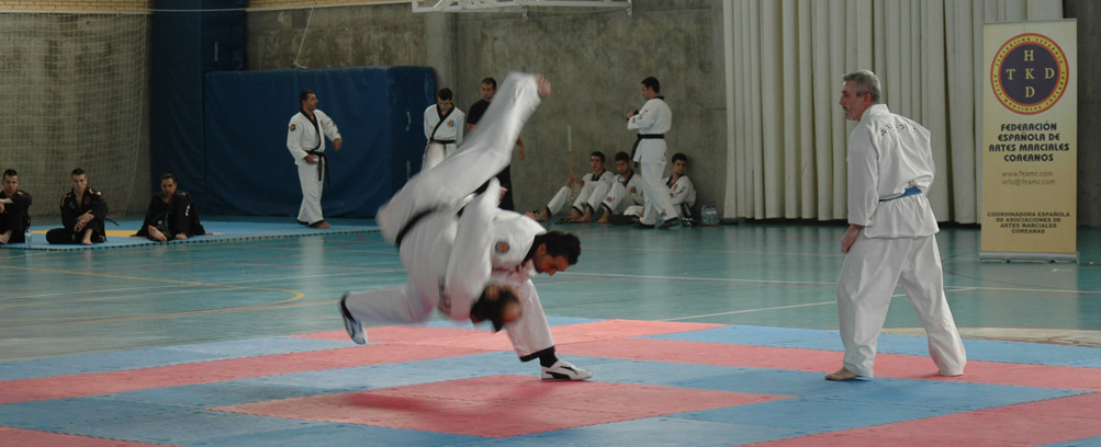Campeonato de España de Hapkido